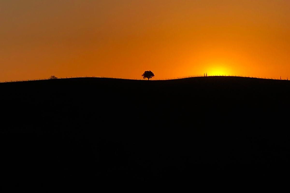Sonnenaufgang, ein Traum