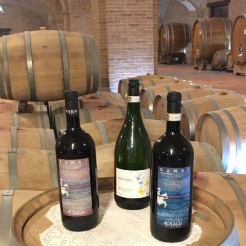 Vini Azienda Scagliola Calosso